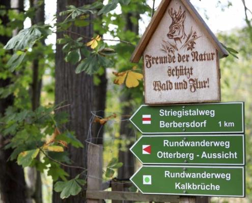 Wanderweg am Waldhaus Kalkbrüche